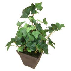 Artificial Ivy Plant