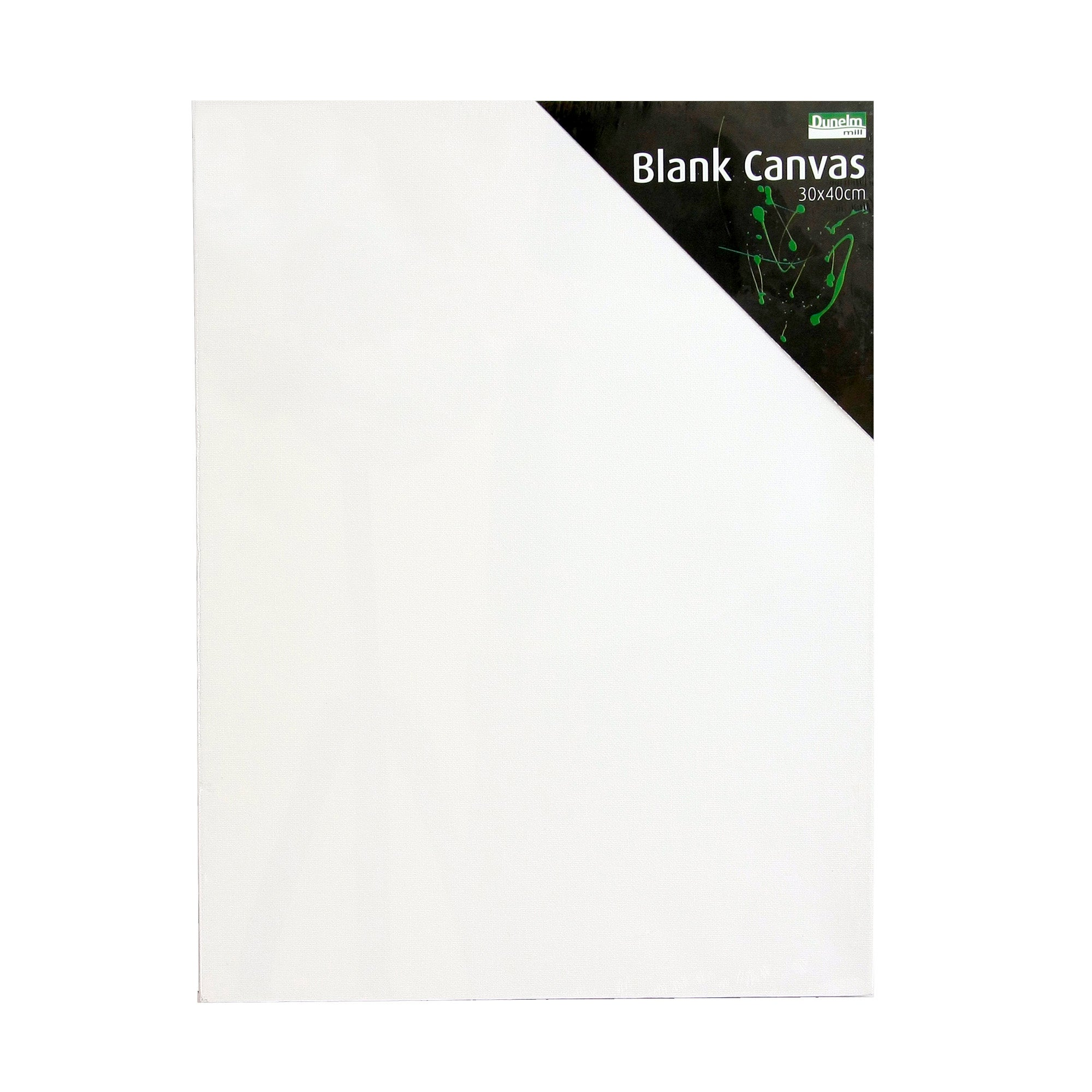 Blank Rectangular Canvas