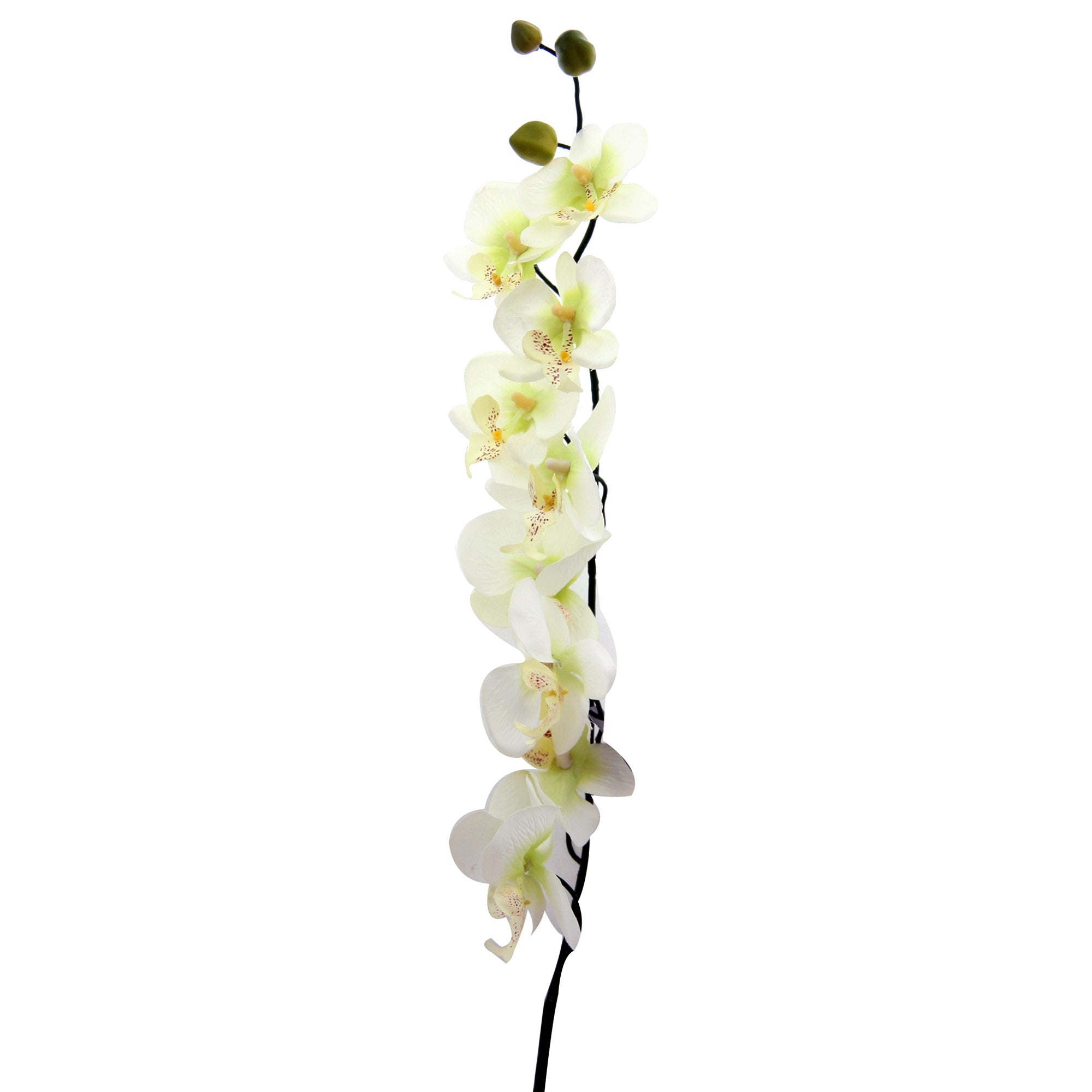 Artificial Green Orchid Spray