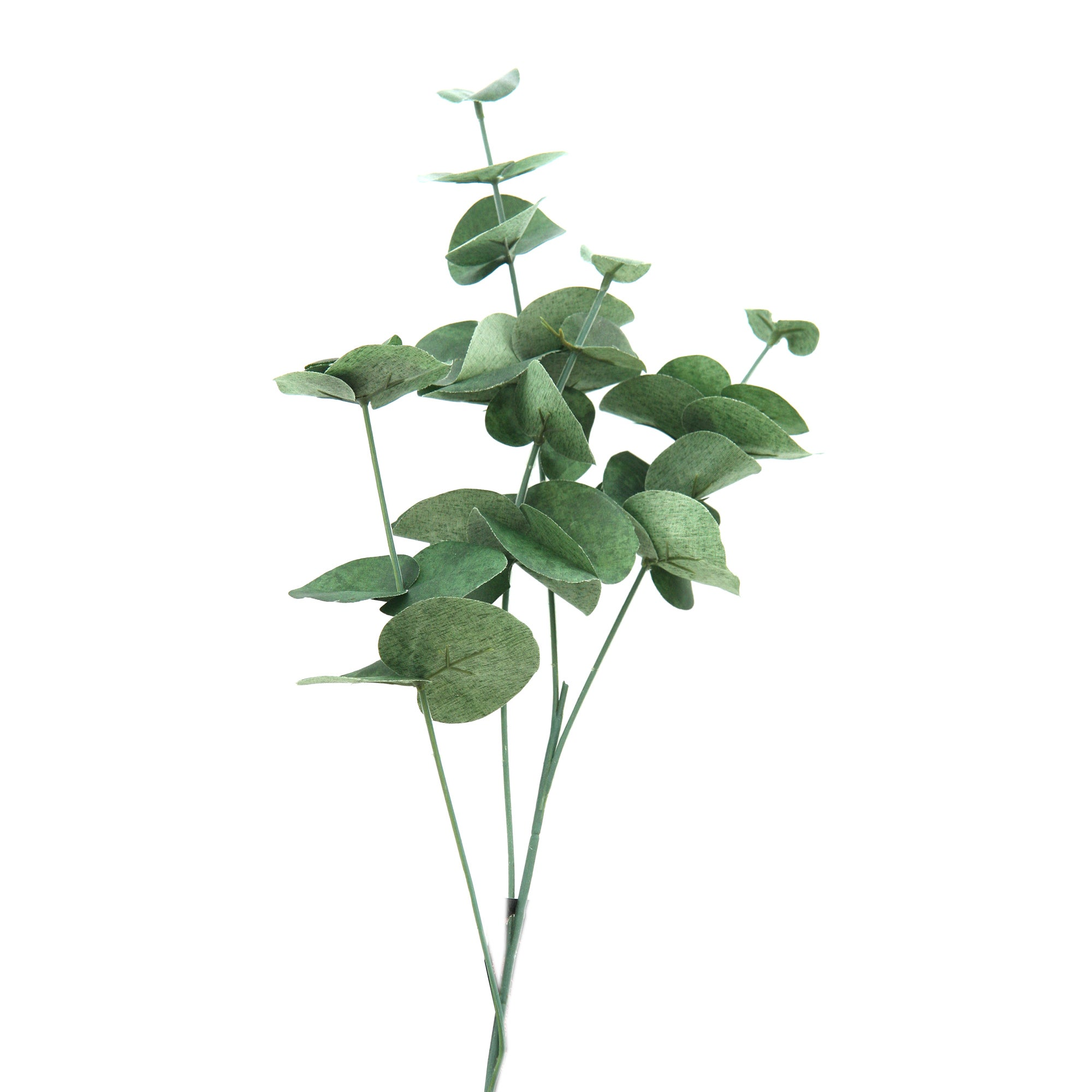 Artificial Eucalyptus Green Stem