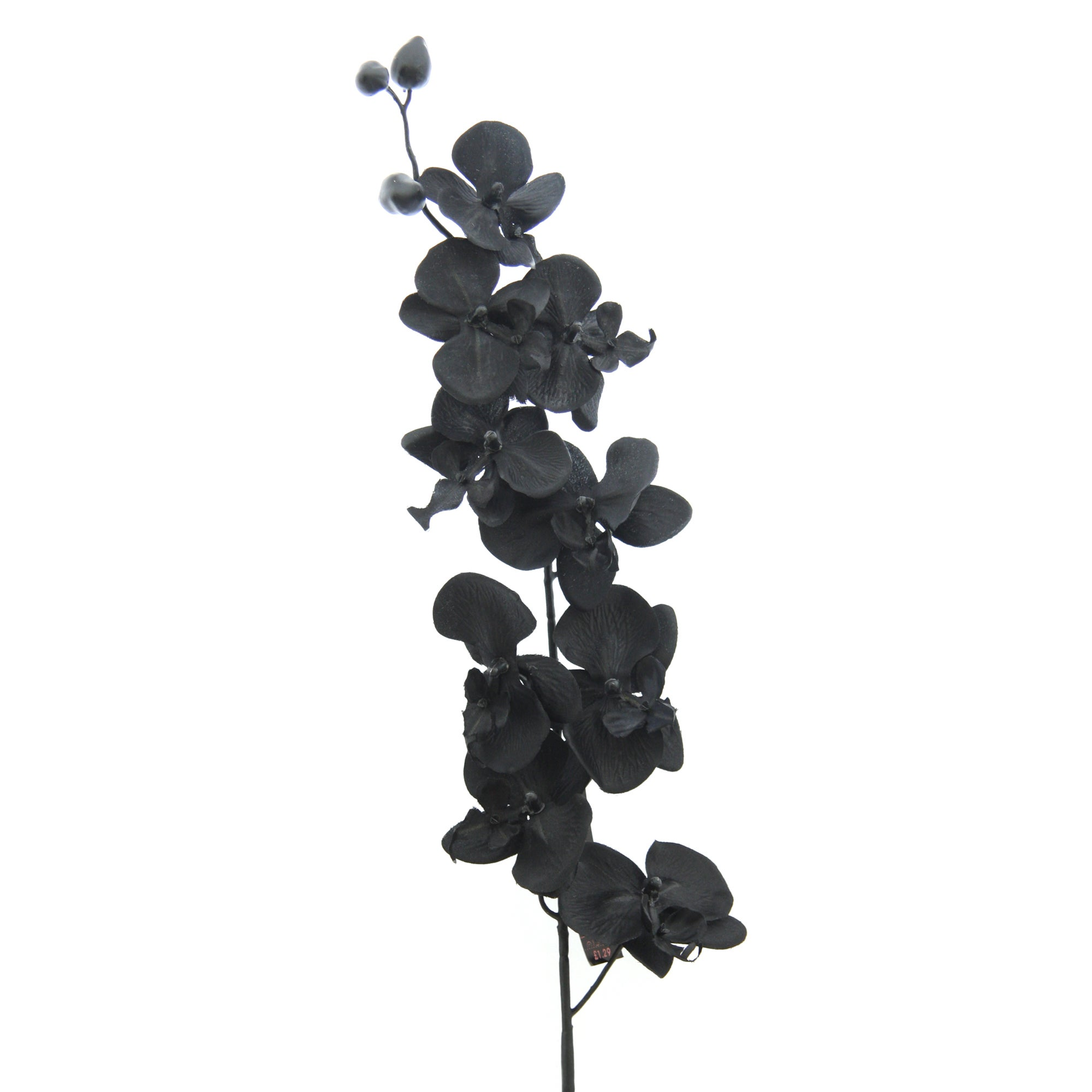 Artificial Black Orchid Spray