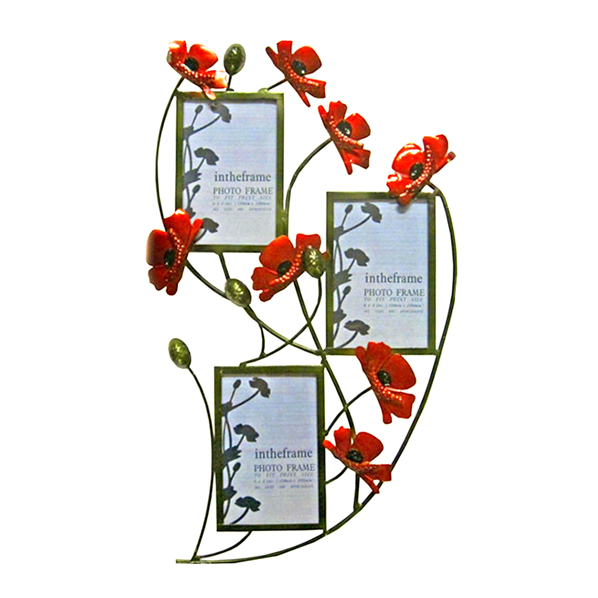 Red Poppy 3 Aperture Photo Frame