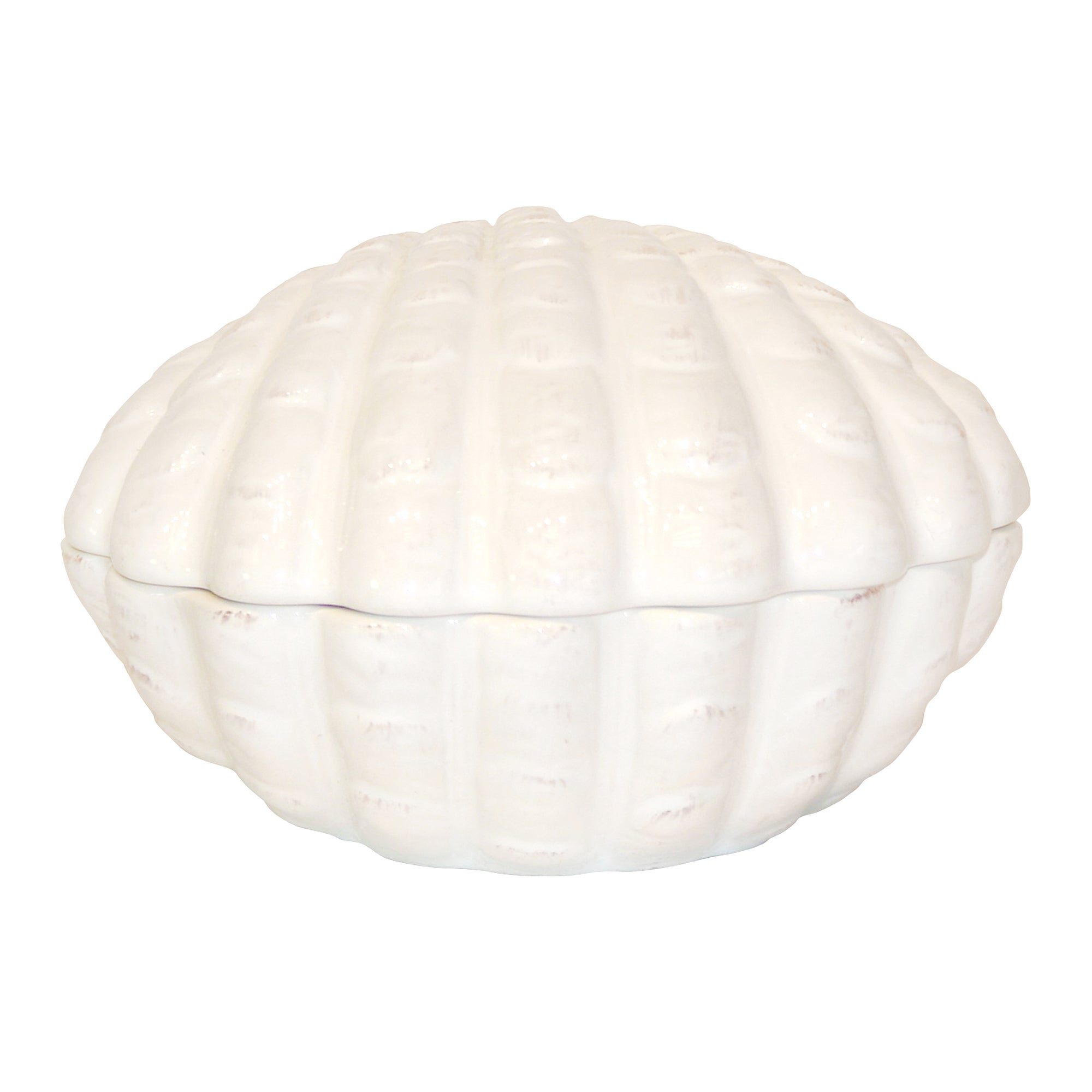 Shell Collection Ceramic Lidded Pot