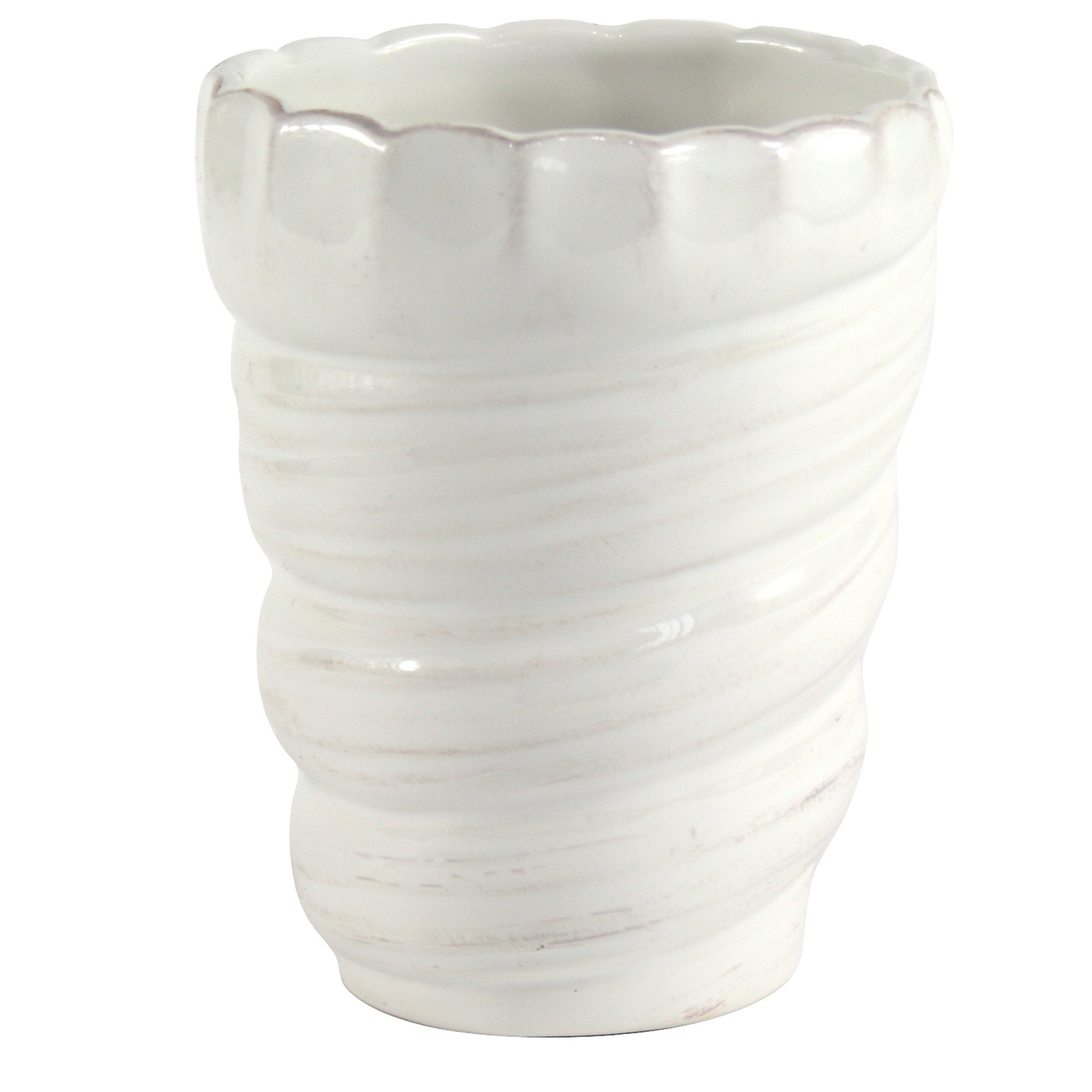 Shell Collection Ceramic Tumbler
