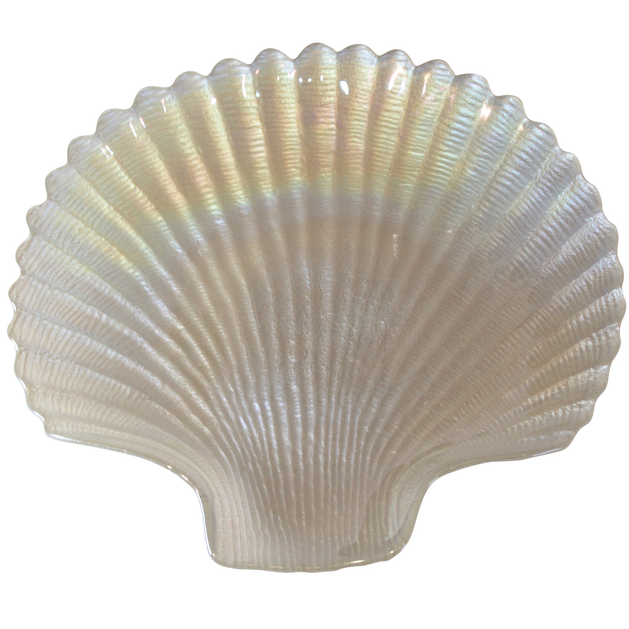 Coastal Collection Pearlised Scallop Shell Dish