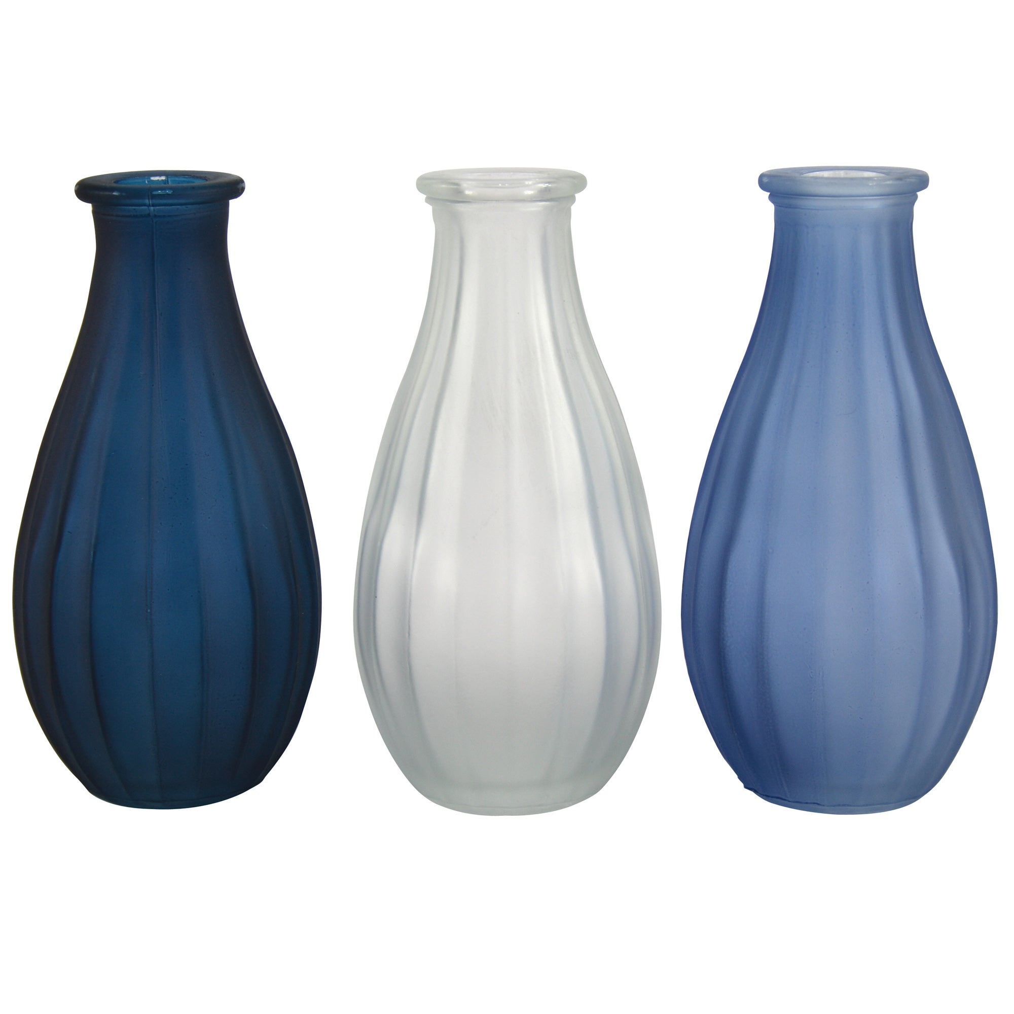 Coastal Collection Glass Vases