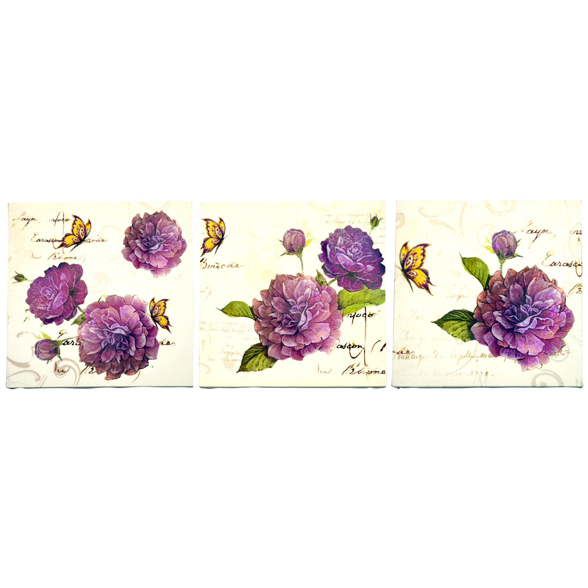 Florence Collection Set of 3 Canvases