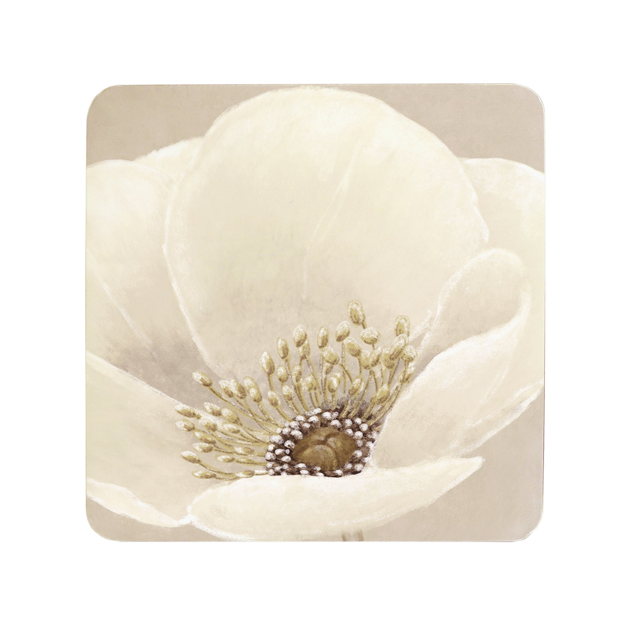 Neutral Flower Collection Set of 6 Coasters