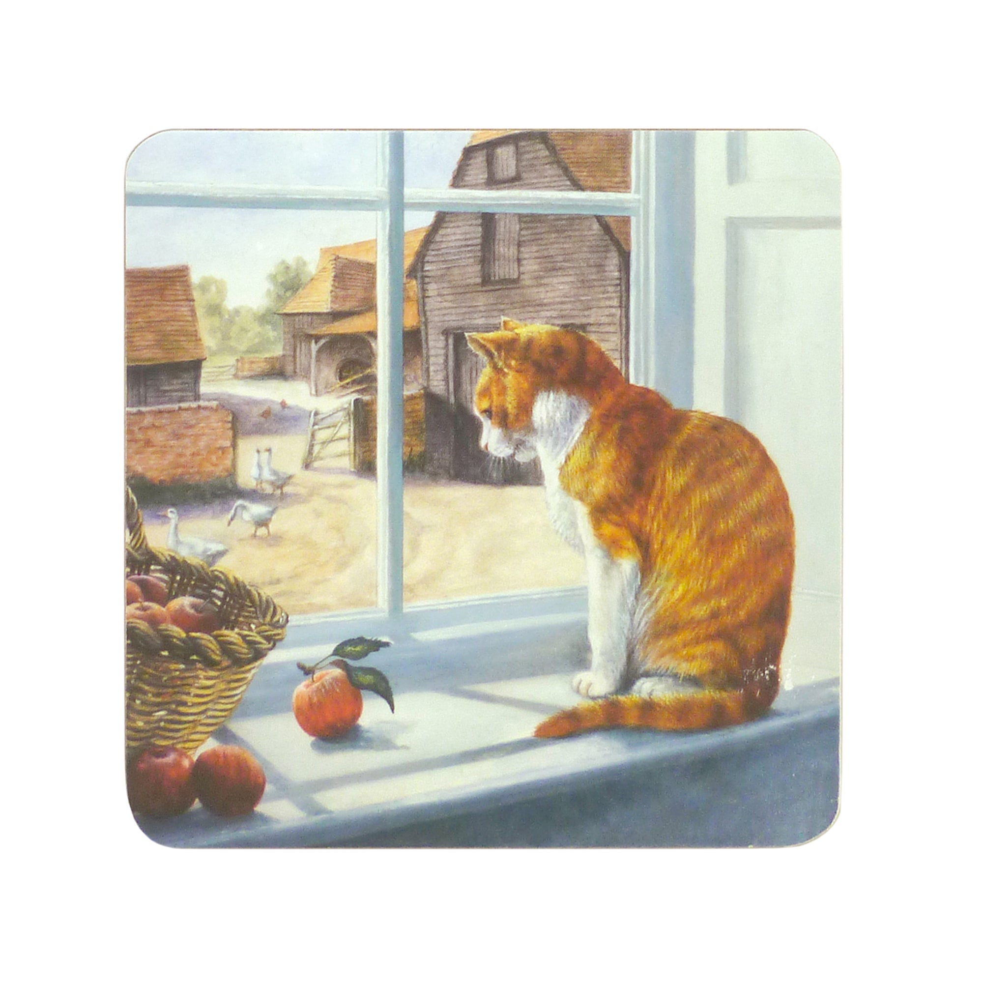 Window Cat Collection Set of 6 Coasters