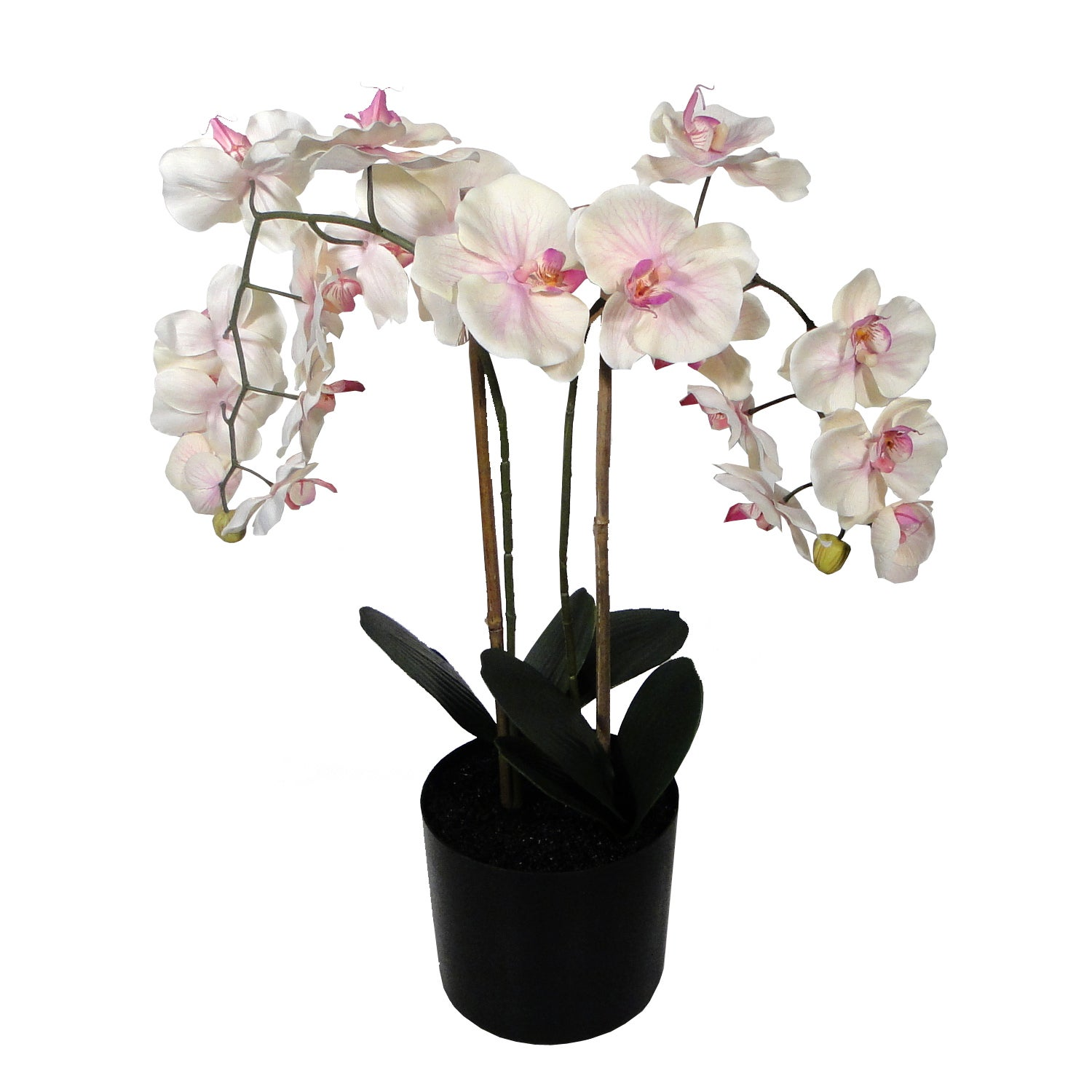 Real Touch Artificial Orchid Arrangement