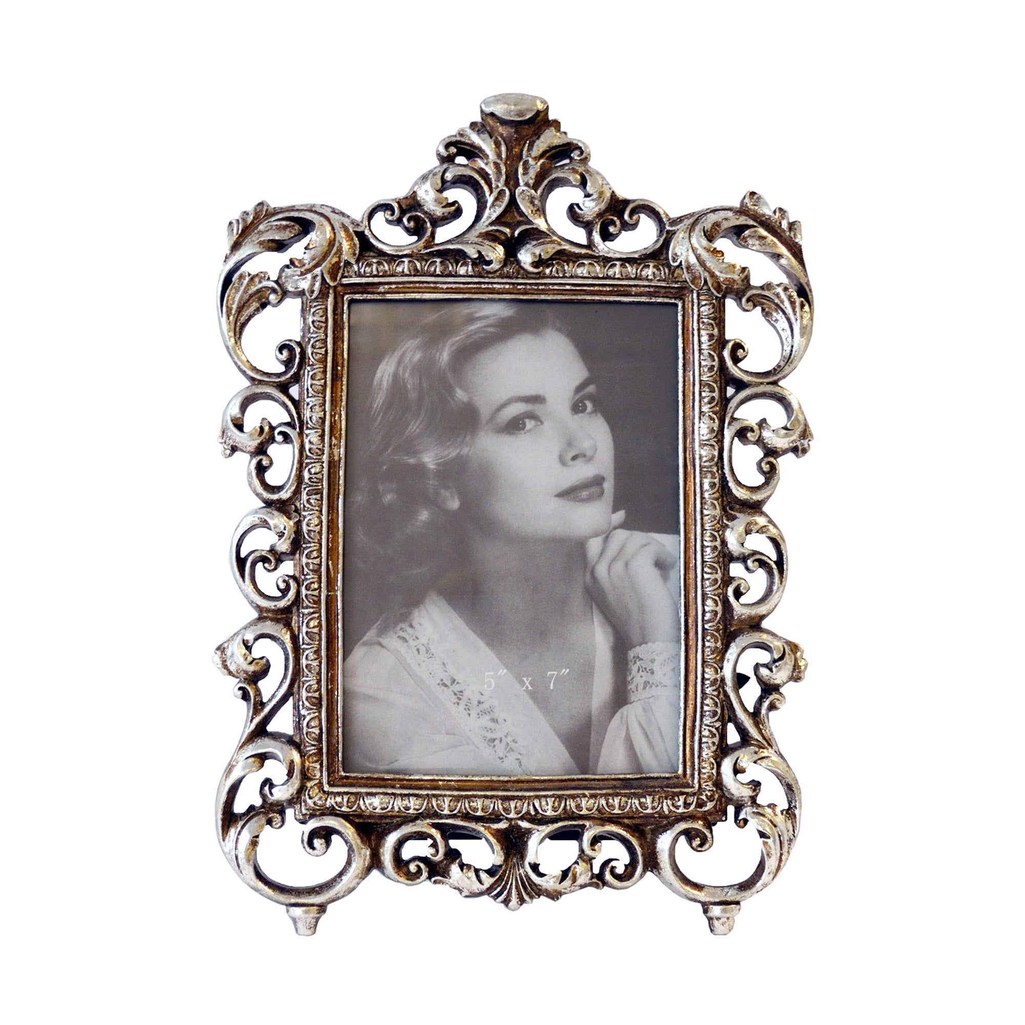 Plum Pudding Collection Silver Photo Frame