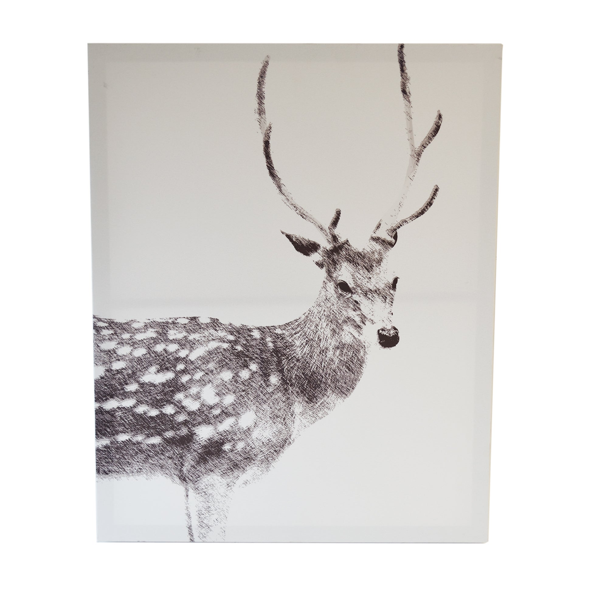Stag Printed Canvas