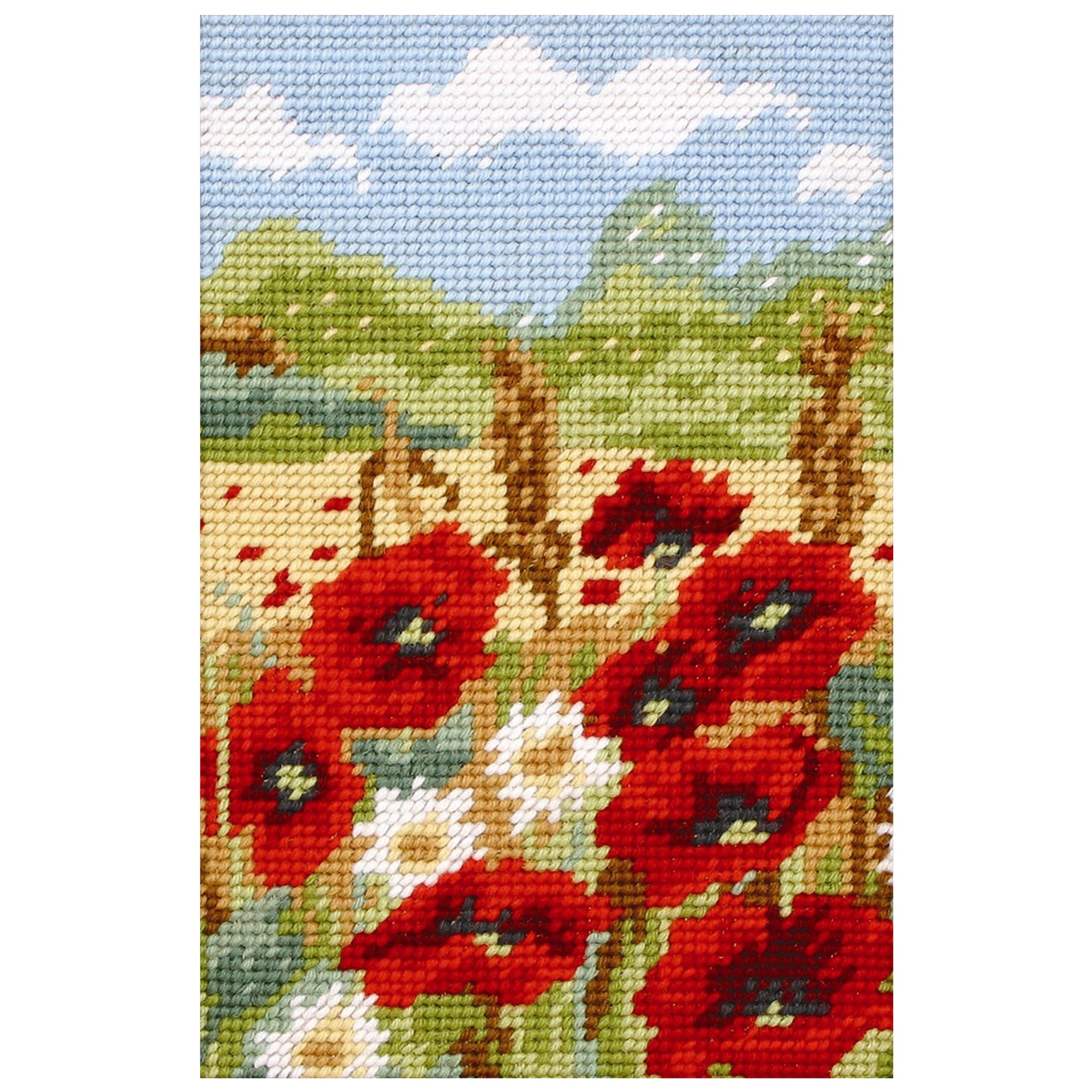 Anchor Poppyfield Starters Cross Stitch Kit