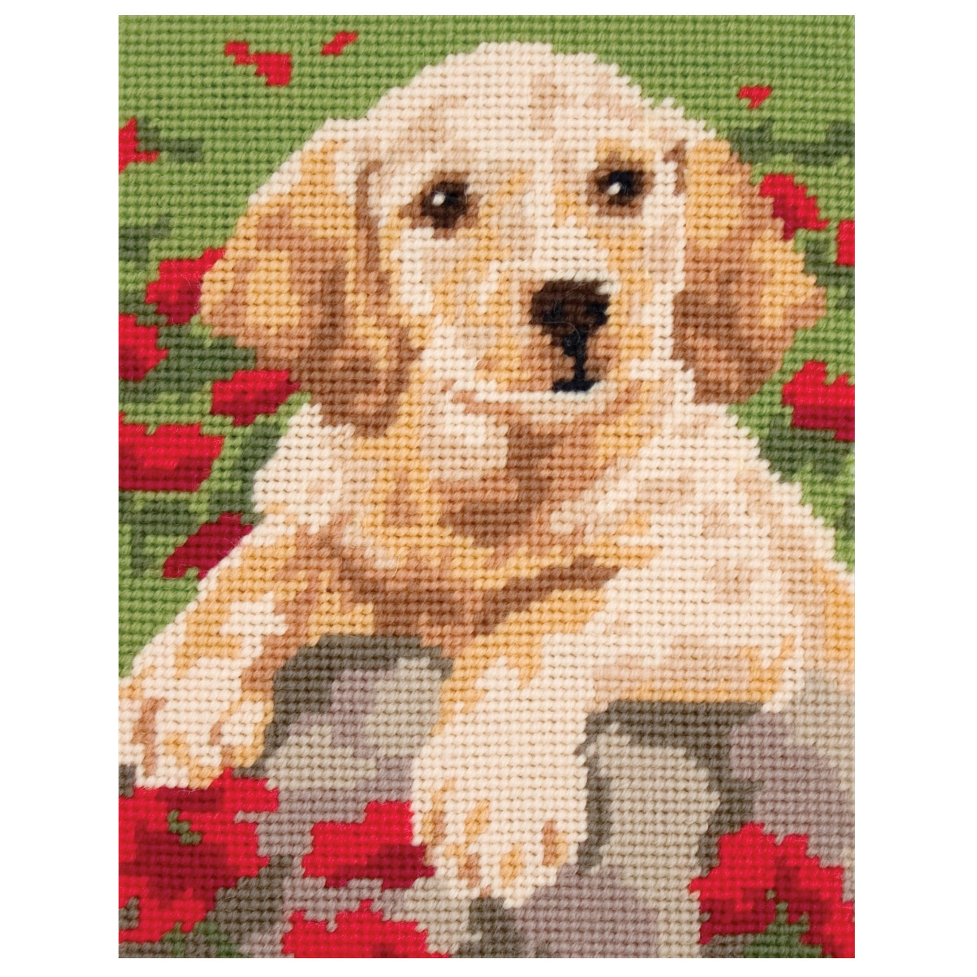 Anchor Labrador Puppy Starters Cross Stitch Kit