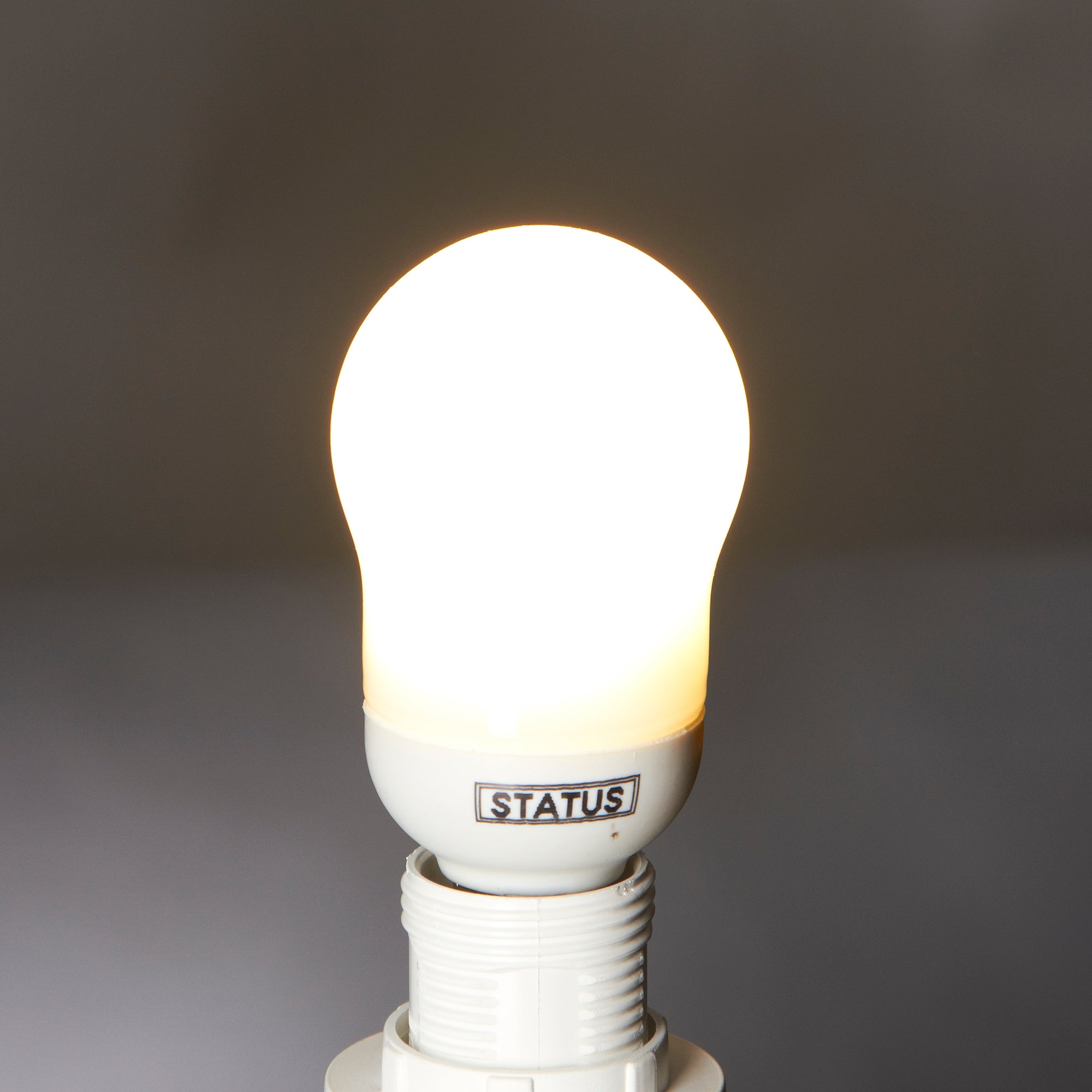 Status 7 Watt SES Energy Saver Bulb
