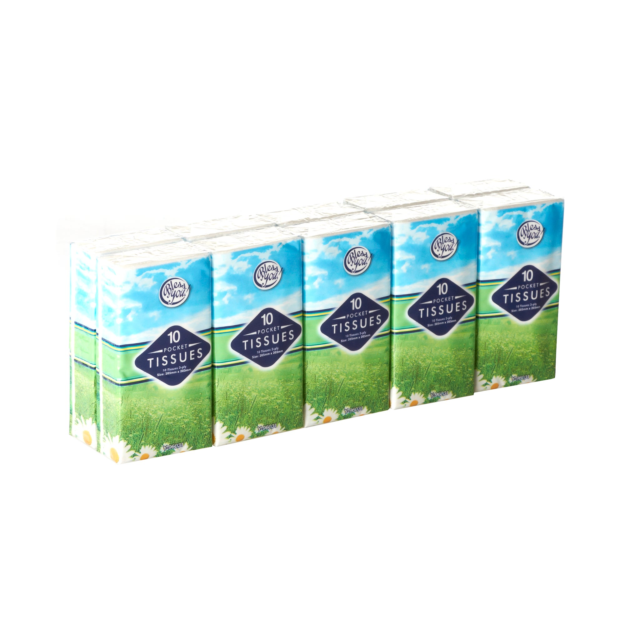 Pack of 10 Pocket Tissues
