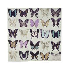 Curiosity Butterflies Canvas