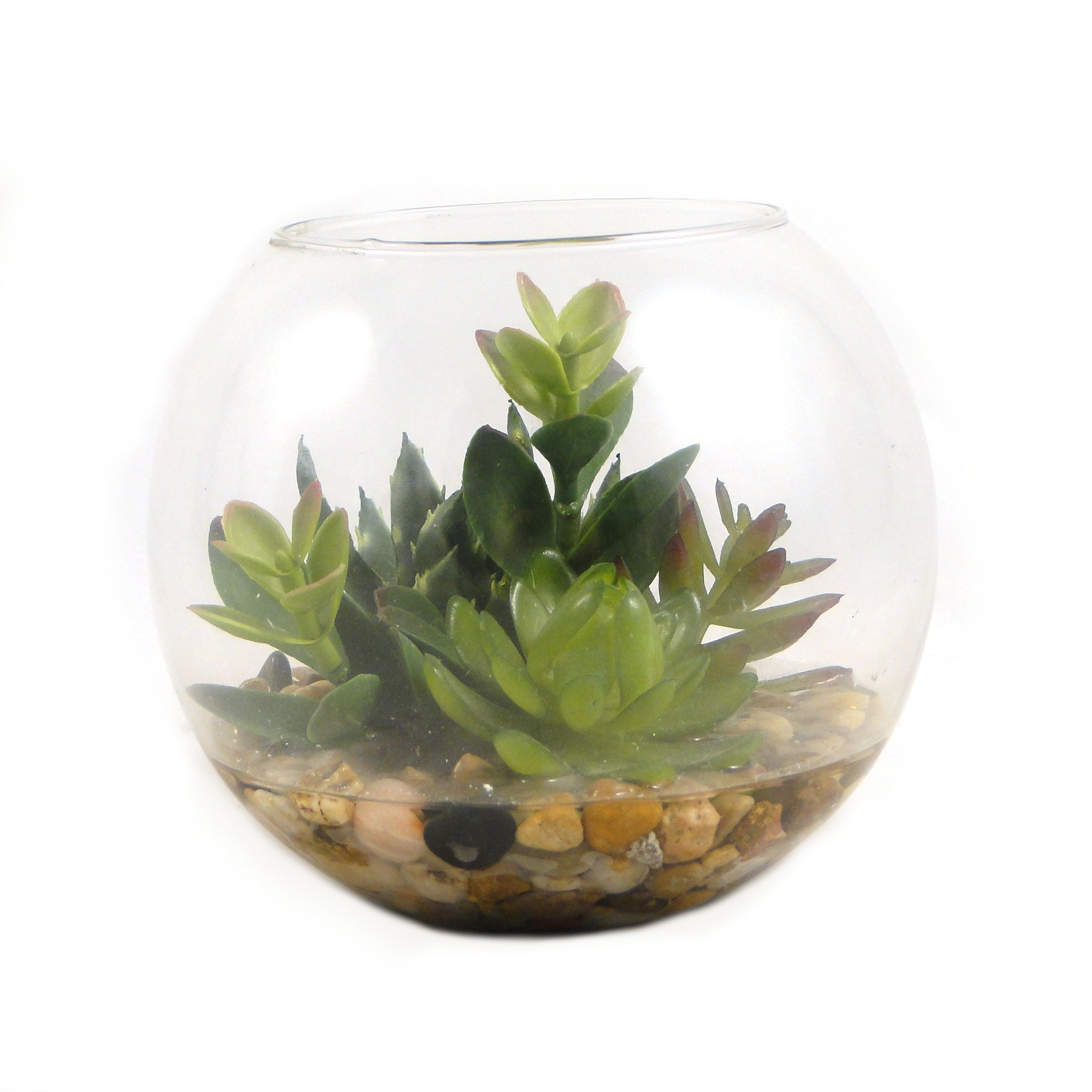 Artificial Succulent Glass Bowl