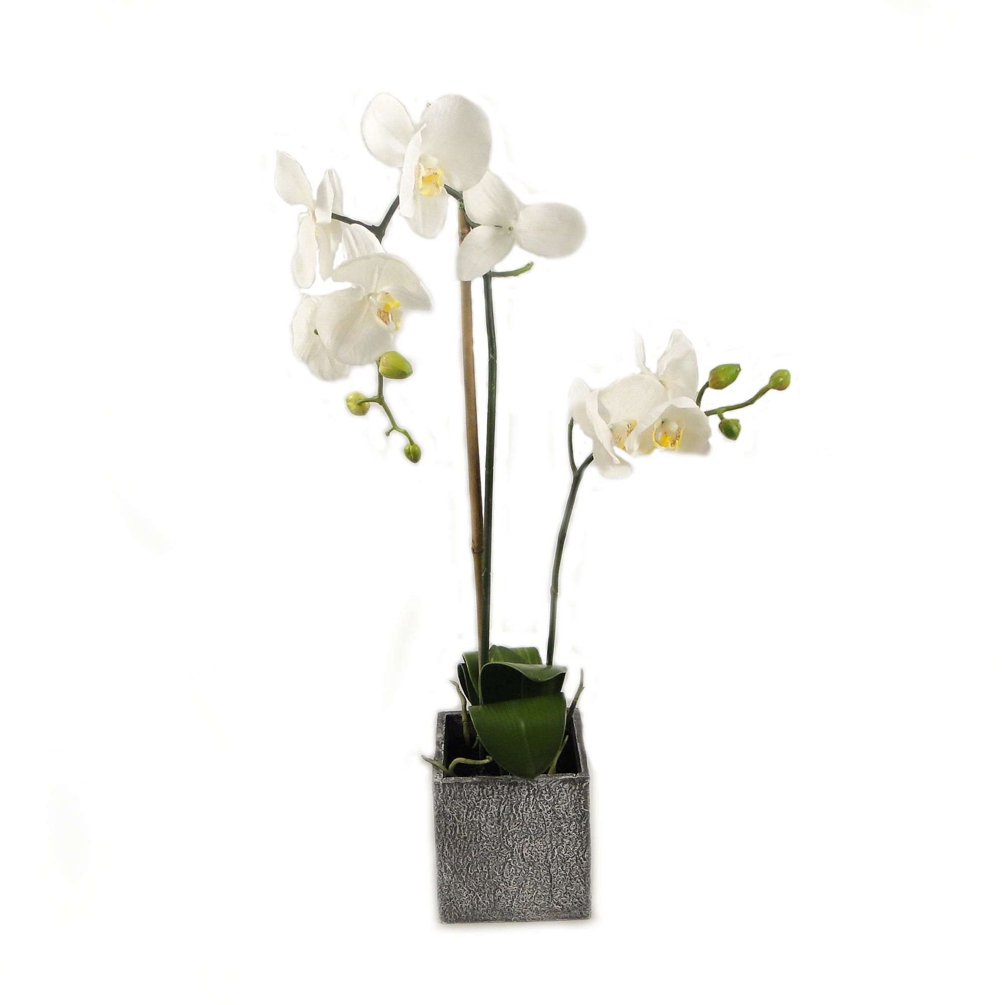 Artificial Orchid in Recycled Paper Planter