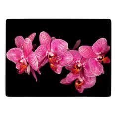 Pack of 4 Pink Orchid Placemats