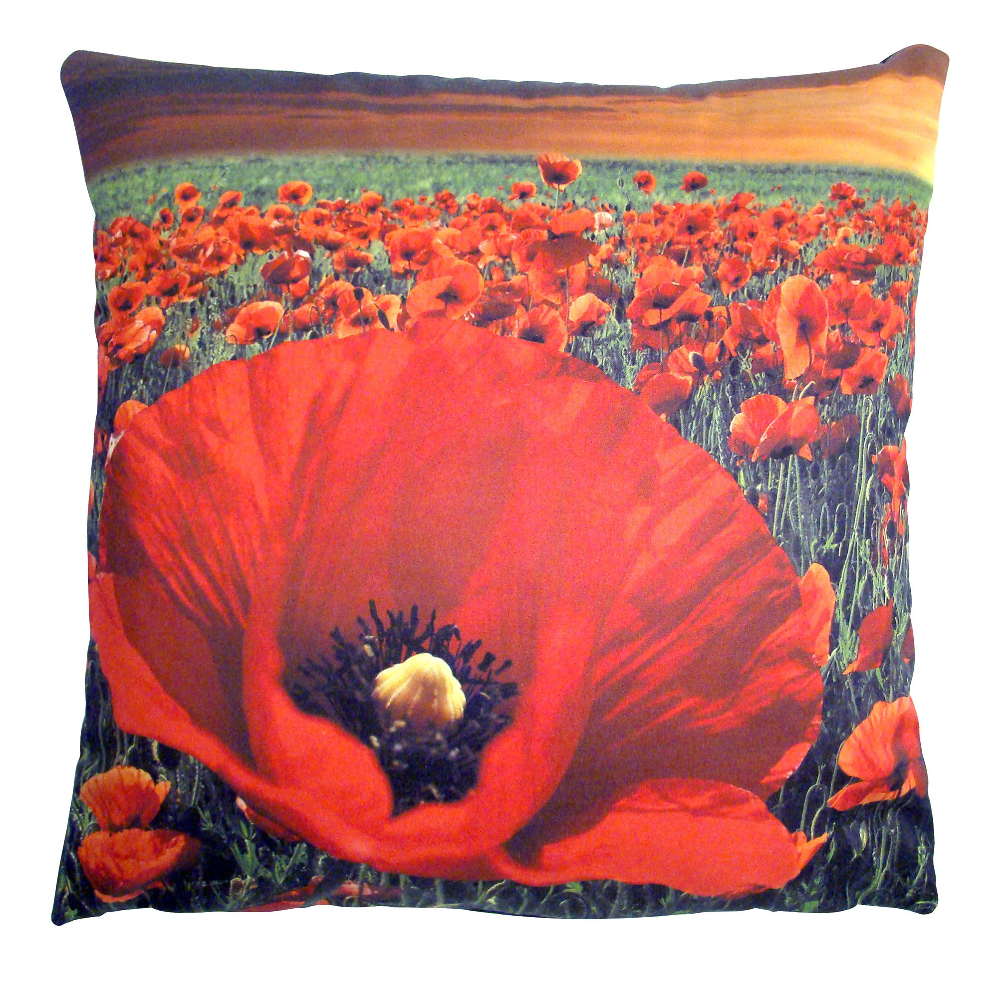 Flanders Cushion Cover