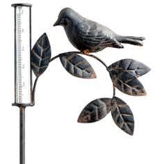 Bird Rain Gauge