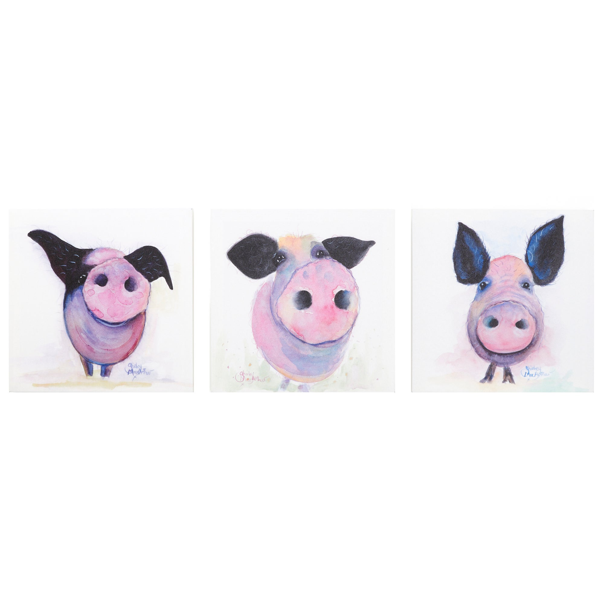Set of 3 Pig Print Canvasses