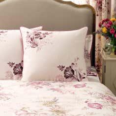 Dorma Pink Camilla Collection Continental Pillowcase