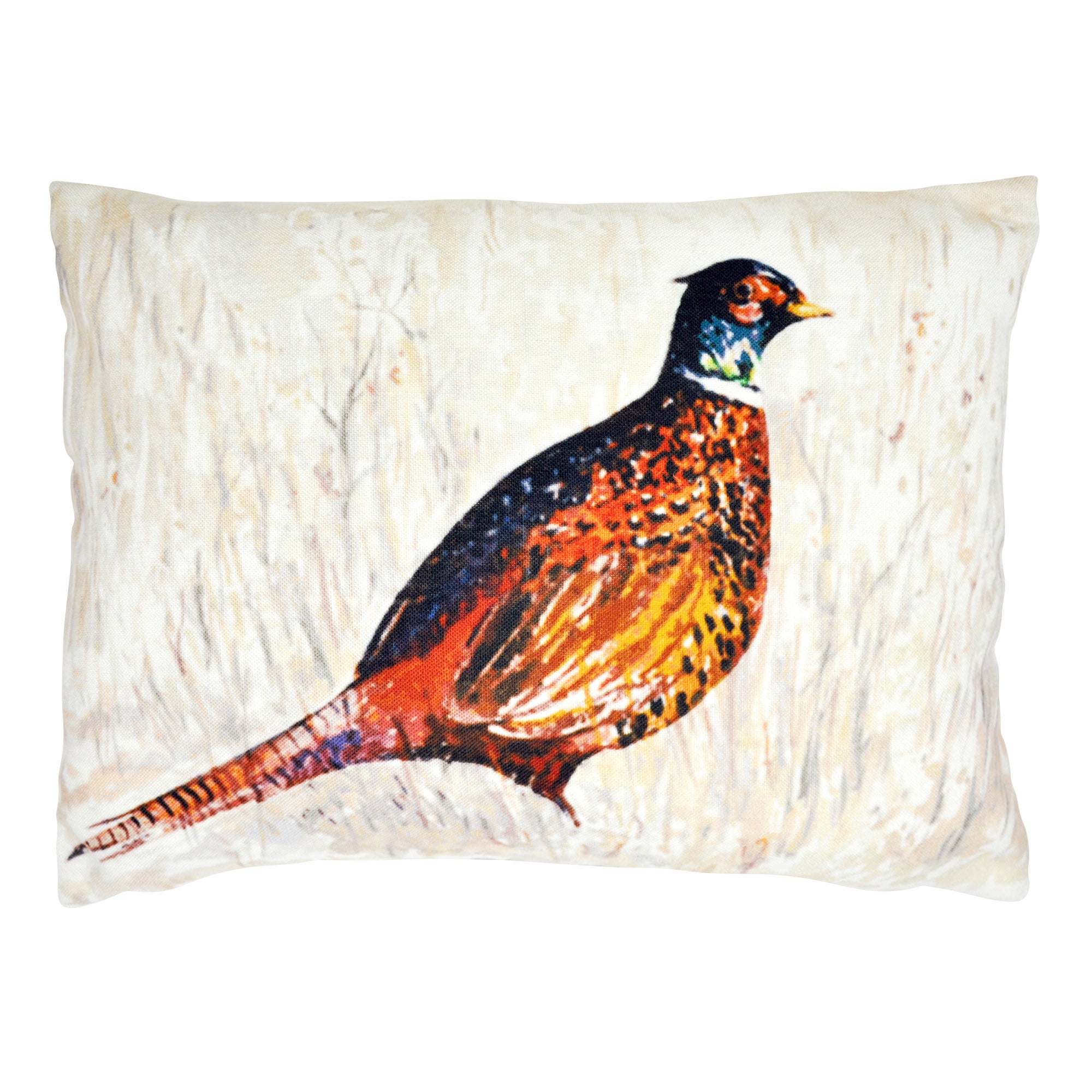 Painted Pheasant Cushion