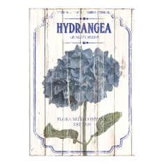 Hydrangea Printed Canvas