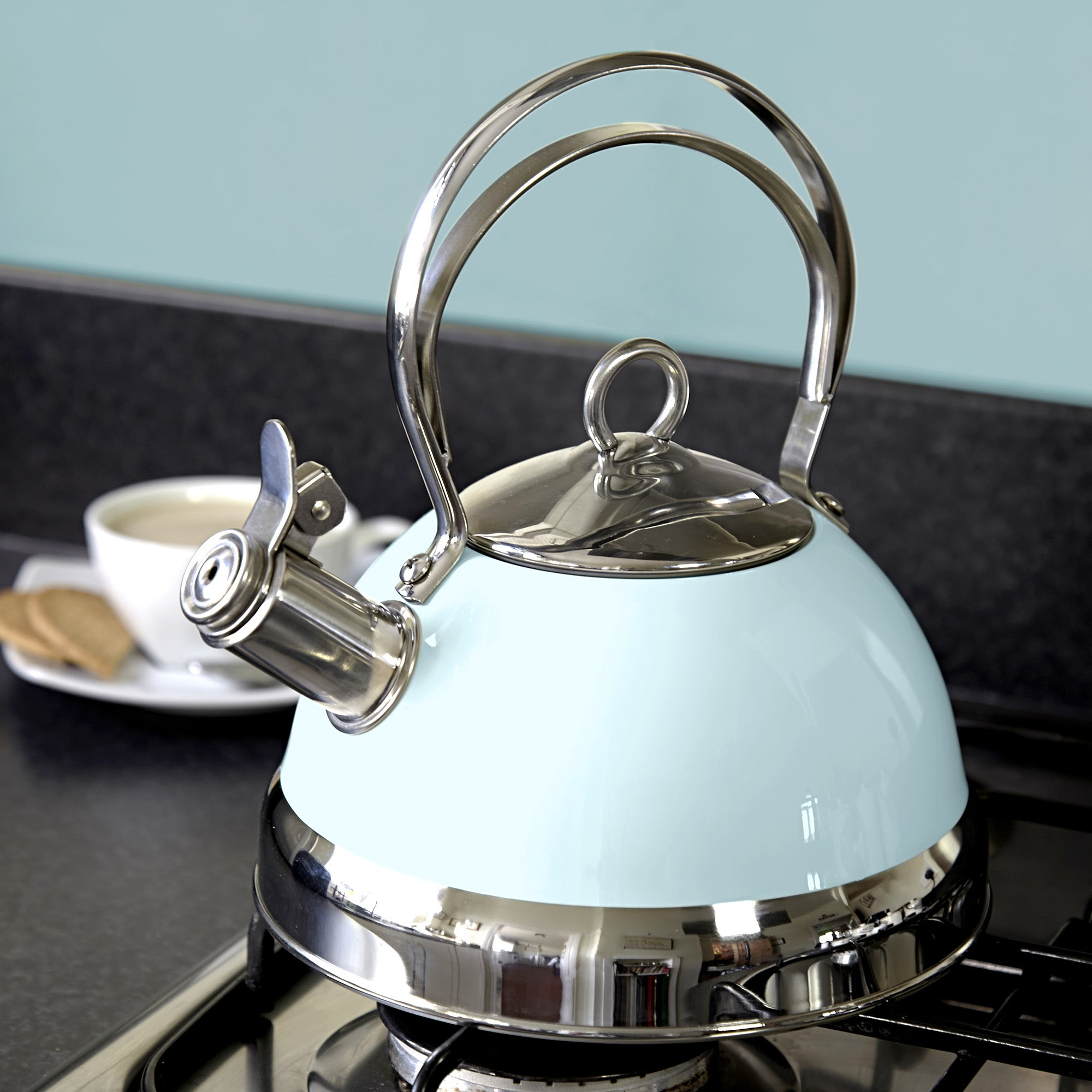 Candy Rose Stove Kettle Duck Egg