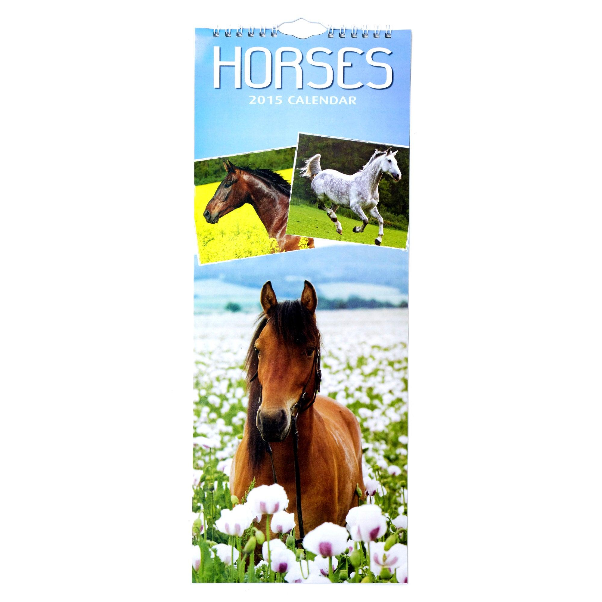 Horses Super Slim 2015 Calendar