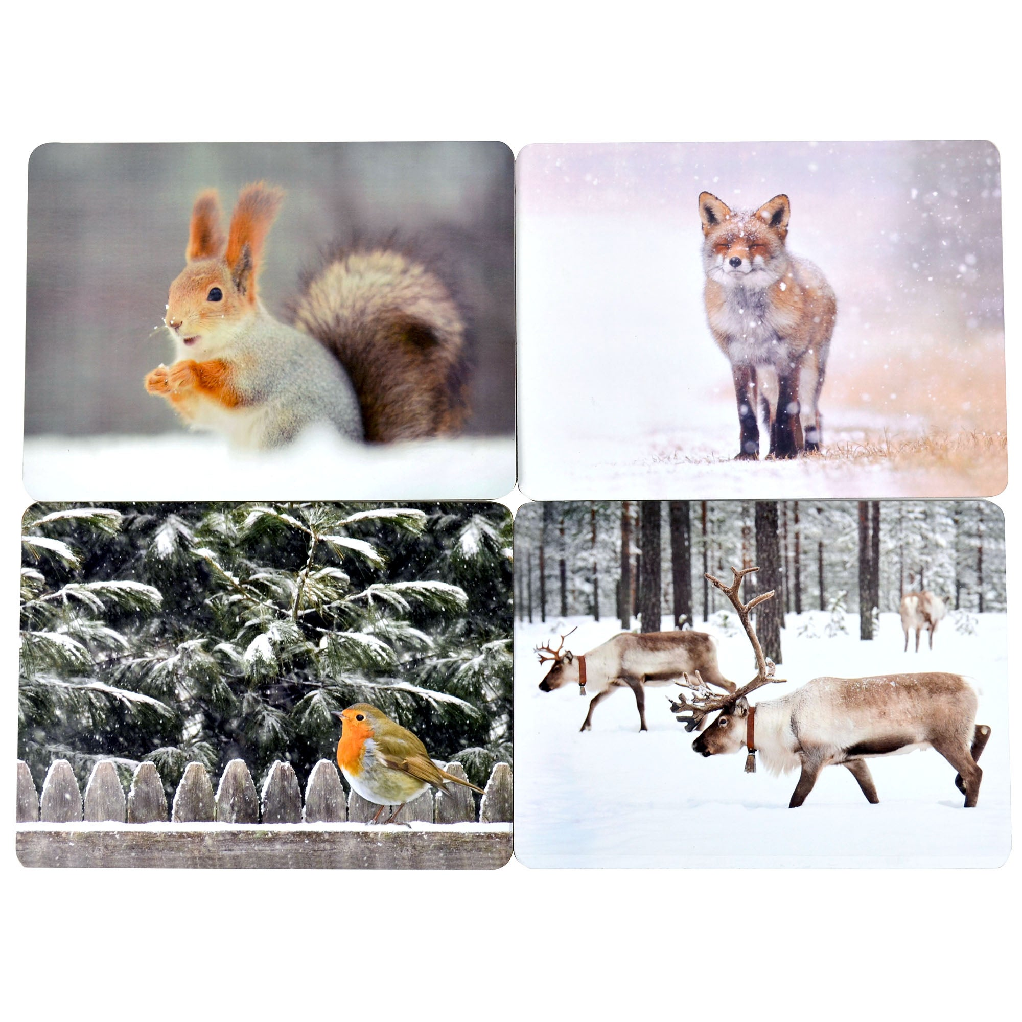 Set of 4 Photographic Animal Placemats