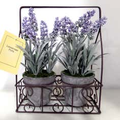 Set of 2 Lavender Pots in Wire Crate