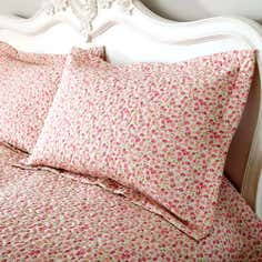 Pink Mimosa Collection Pillow Sham