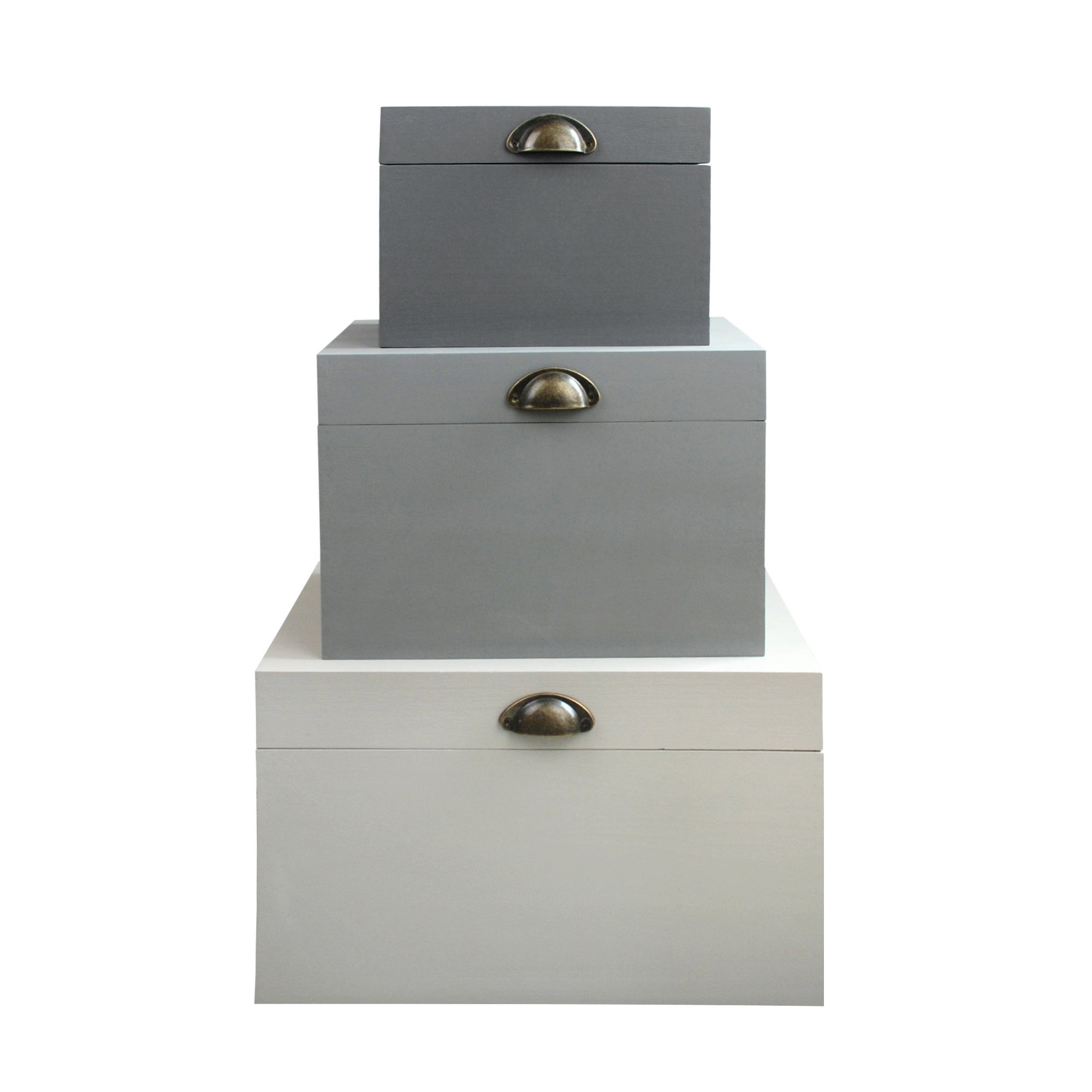 Purity Collection Storage Trunk