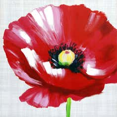 Red Poppy Hand Painted Canvas