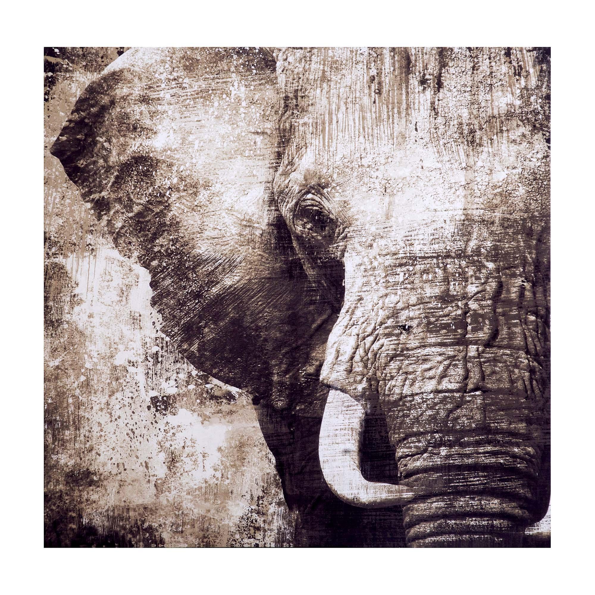 Elephant Printed Canvas