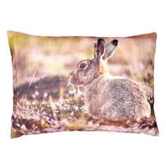 Photographic Hare Cushion